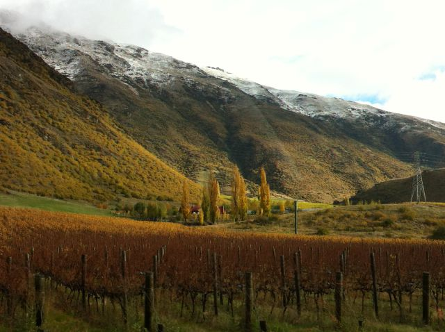 Driving from West Coast to Queenstown: Kawarau Gorge