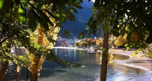 Queenstown beach view