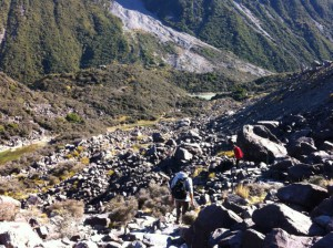 Tasman Glacier View walking track