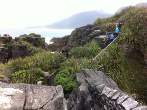 Walking in Paparoa National Park