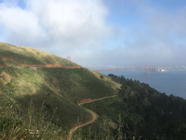 Hawk Hill roads