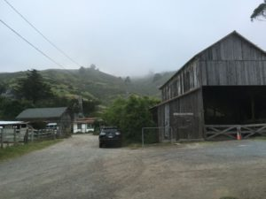 Muir Beach village