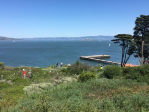 San Francisco Bay Trail view