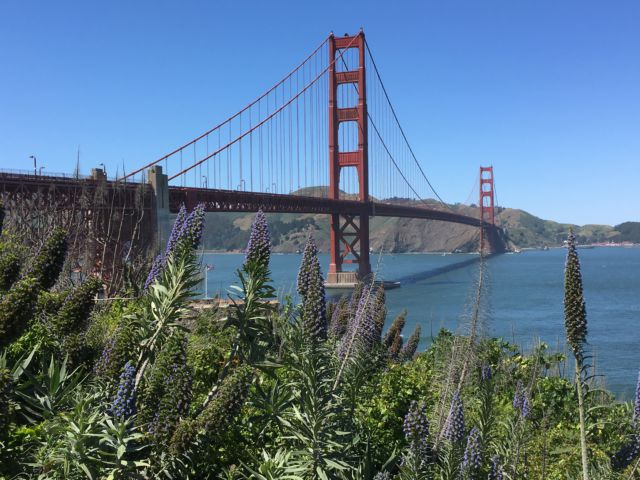 San Francisco Golden Gate Bridge