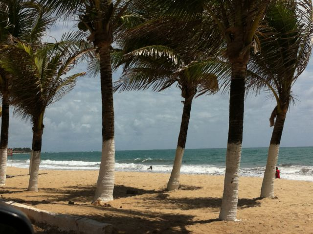 Porto de Galinhas beach and palms