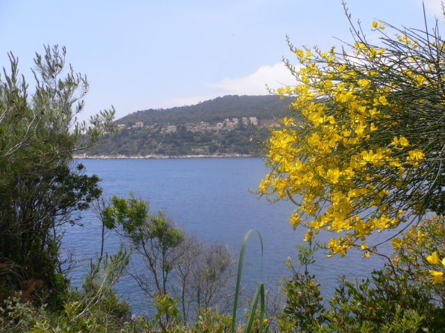 Walking around Cap-Ferrat Villefrance view