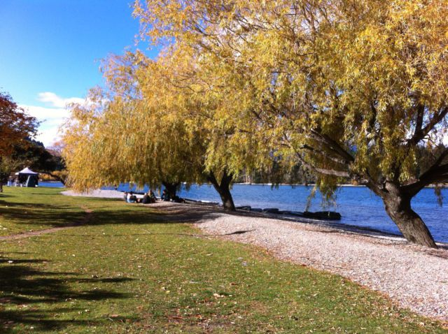 Queenstown autumn walk Wakatipu lakeside park