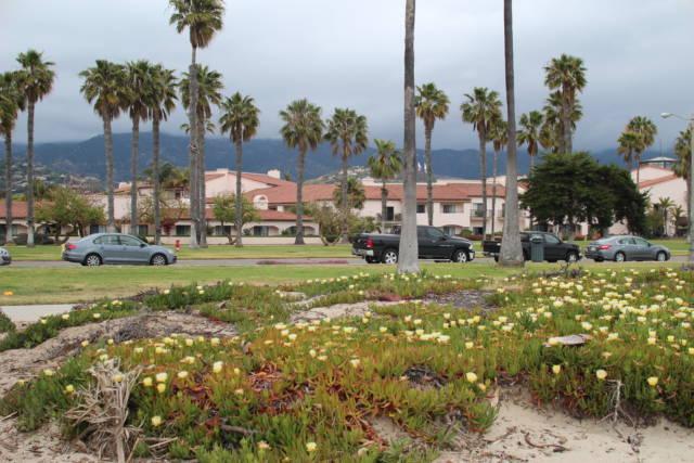 Santa Barbara beach park