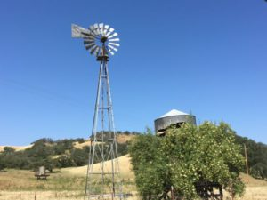 Ynez Valley windmill