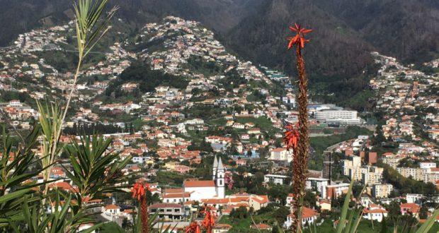 Funchal mountain view