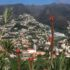 Funchal mountain view
