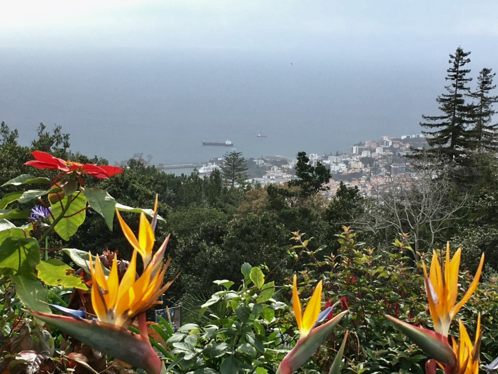Santana day trip from Funchal, view from Monte