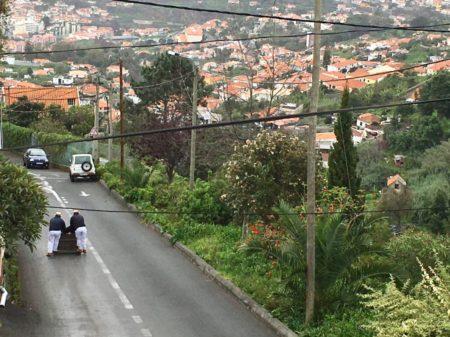 Monte toboggan road