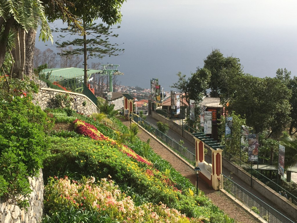 Monte view