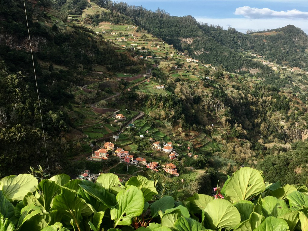 Santana day trip from Funchal, Ribeiro Frio to Faial