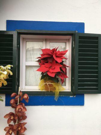 Santana window