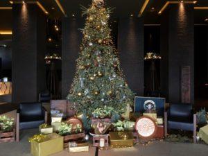 Savoy Saccharum Christmas tree