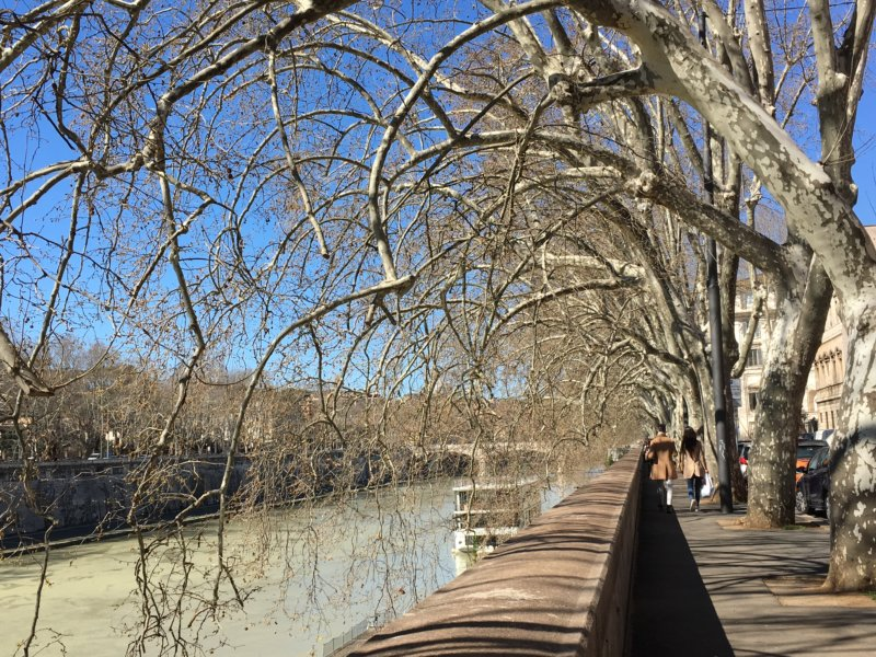 Top 10 sights in Rome River Tiber