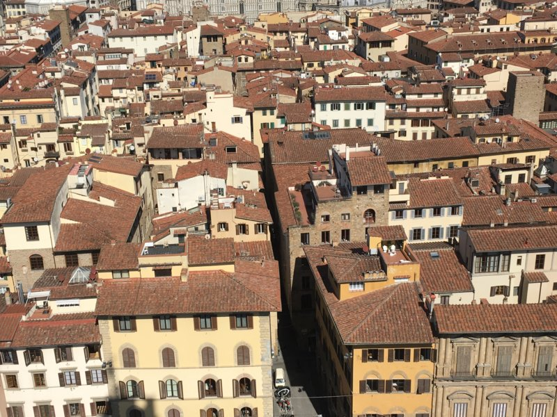 Florence old town roofs