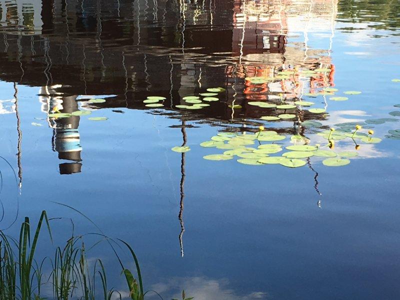 Tarjanne reflection in water