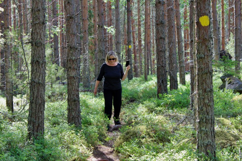 Hiking in Southern Konnevesi National Park