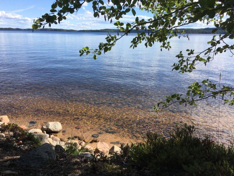 Pyysalo lake view