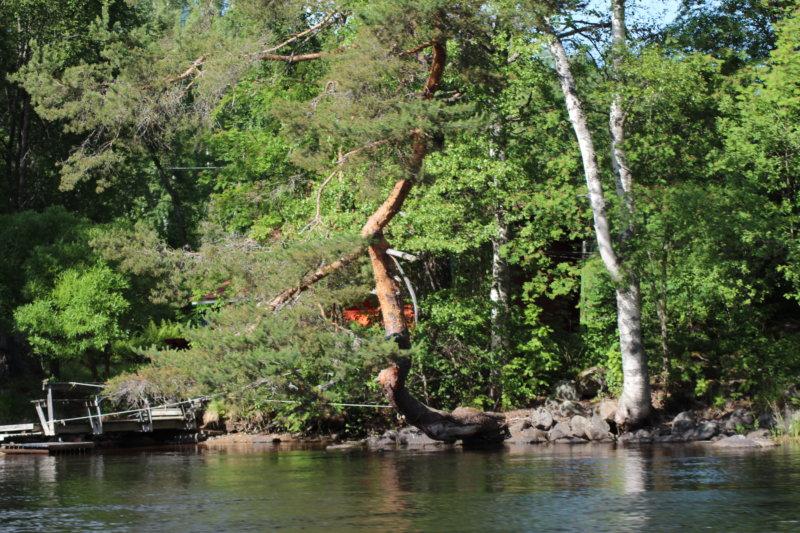Southern Konnevesi National Park water view
