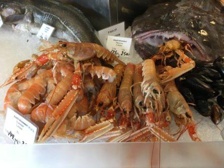 Crayfish, Saeby harbor