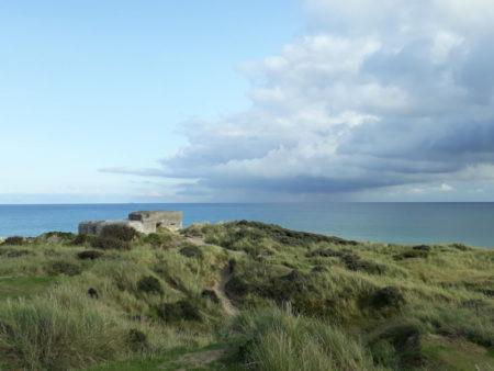 Grenen dunes and Baltic Sea