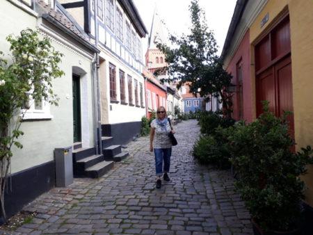 Visiting Aalborg gamle by