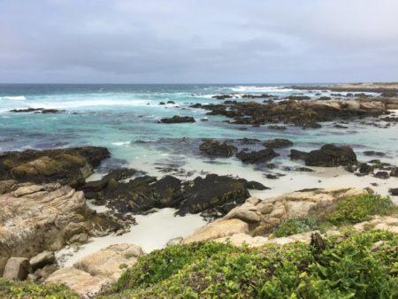 17 Mile Drive Ocean shore