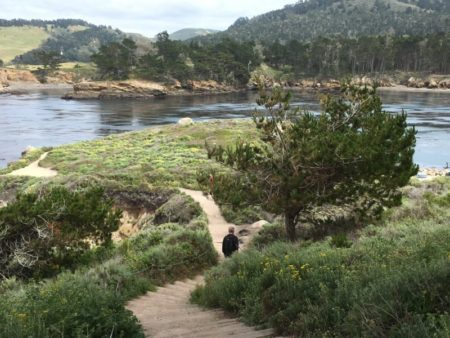 Hiking in Point Lobos State Natural Reserve