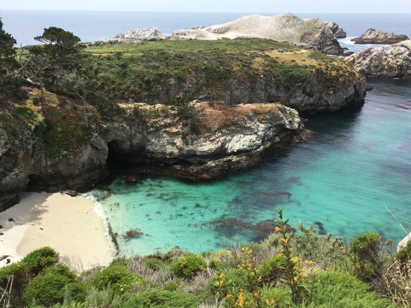Point Lobos State Natural Reserve seal cove
