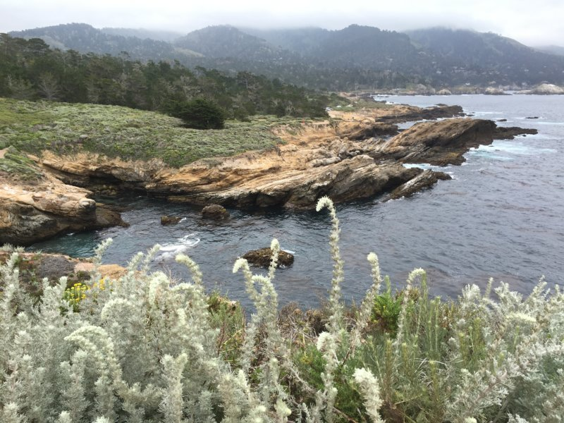 Point Lobos State Reserve view to Big Sur