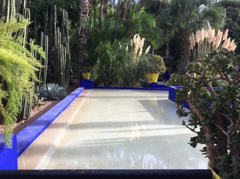 Majorelle Gardens pool