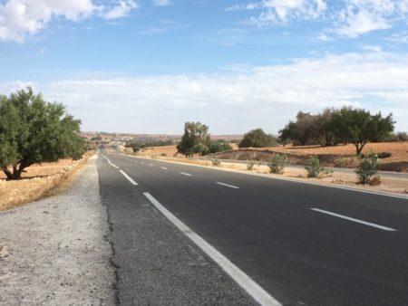 The road Marrakech to Essaouira, Morocco