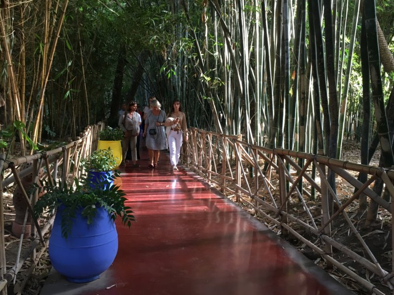 Walking in the Majorelle Gardens