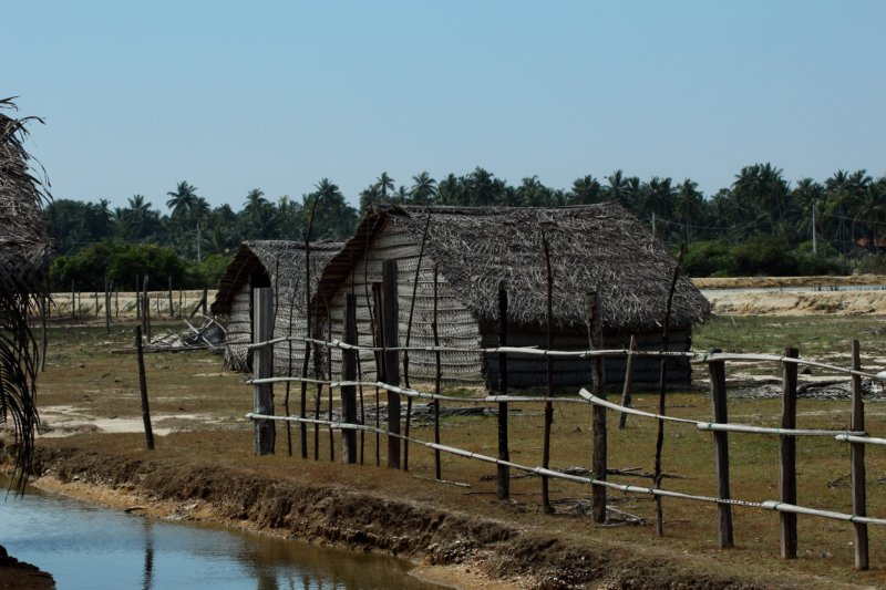 Fisherman's huts in Kalpitiya