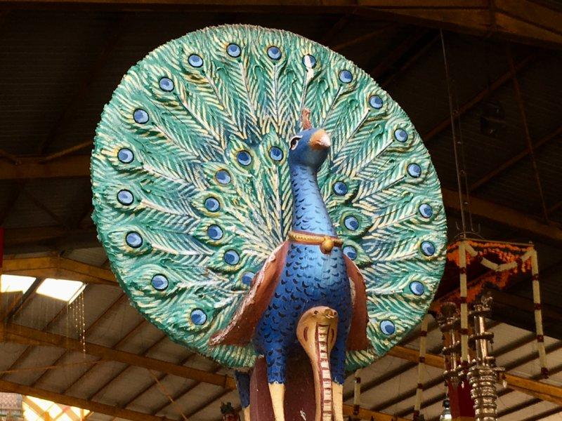 Hindu temple peacock statue