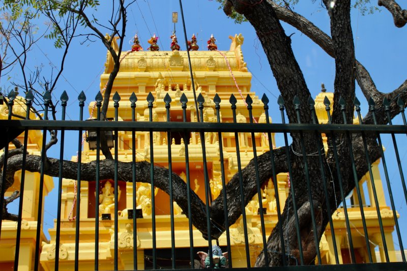 Temple, Colombo to Kalpitiya
