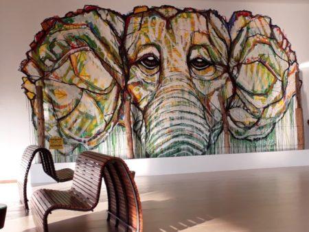Aliya, an elephant