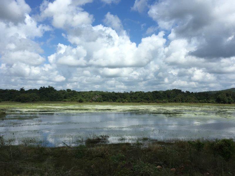 Sri Lanka's East Coast ,lagoon