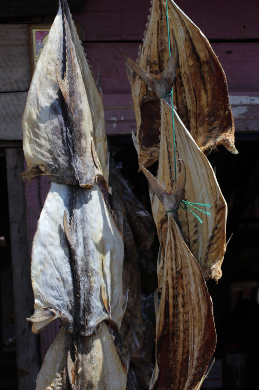 Drying fish, Trincomalee