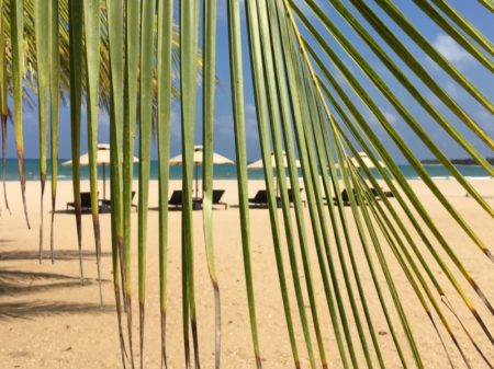 Maalu Maalu Resort beach chairs