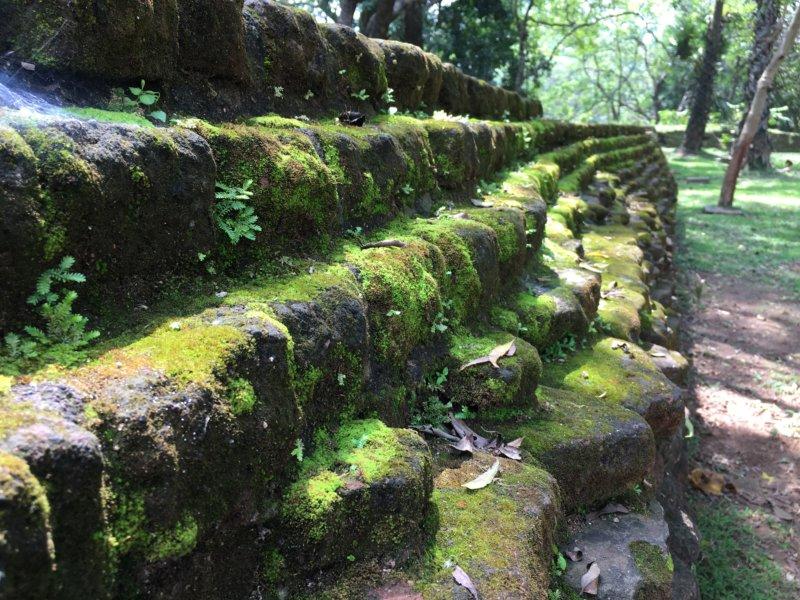 Polonnaruwa stone wall
