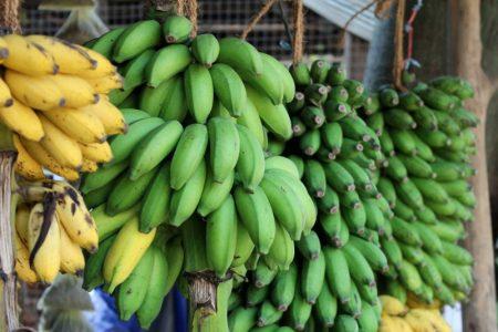 Bananas, Sri Lanka's South Coast