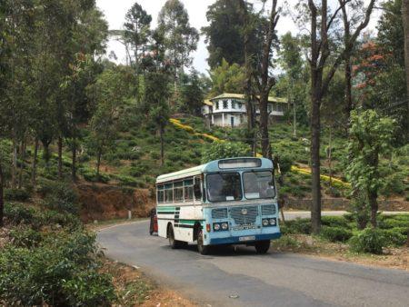Tea country public transport