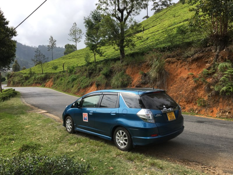 Driving through Sri Lanka's tea country