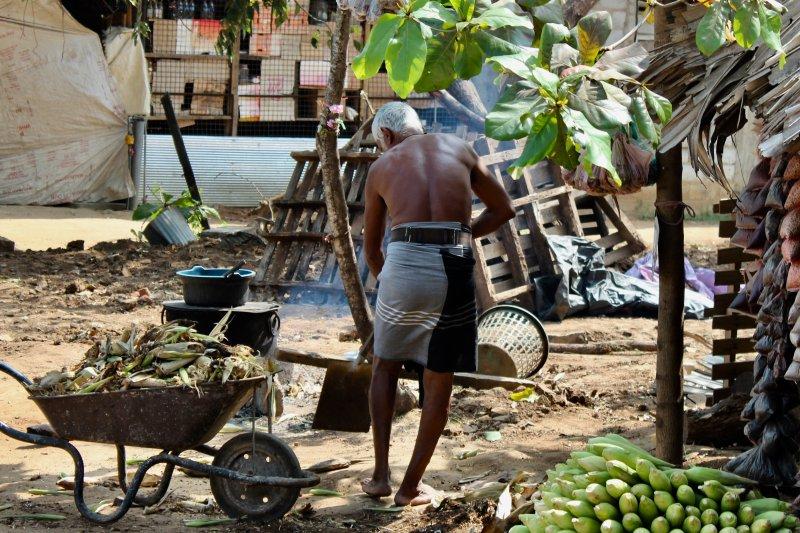 Man at his work, Sri Lanka's South Coast