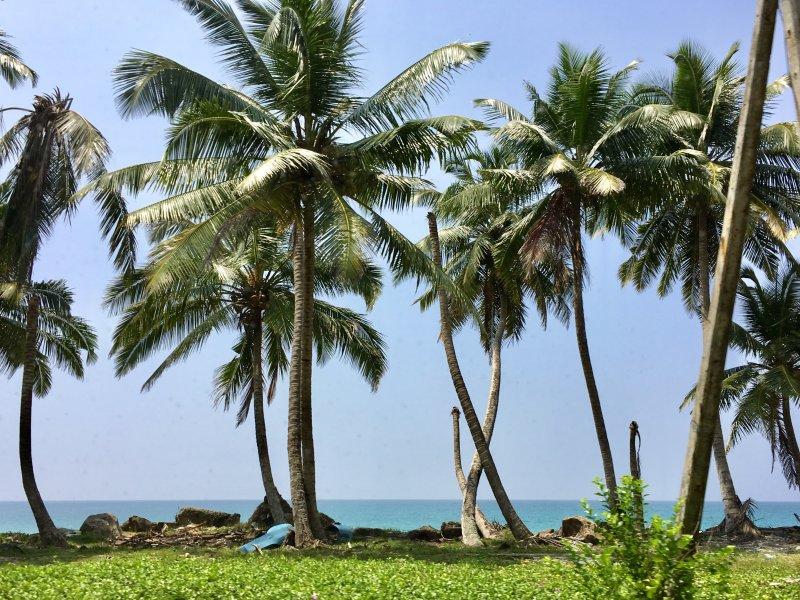 Sri Lanka's South Coast after tsunami